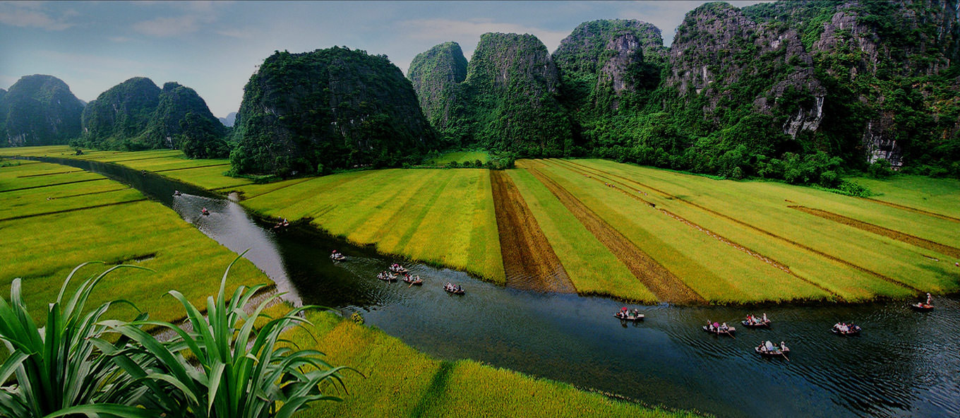 VietNam Tours & Travel