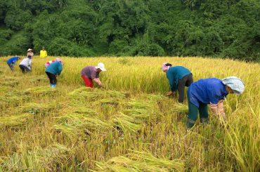 AGRO & ECO TOUR - Vietnam tours
